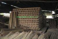 bamboo cane 5
