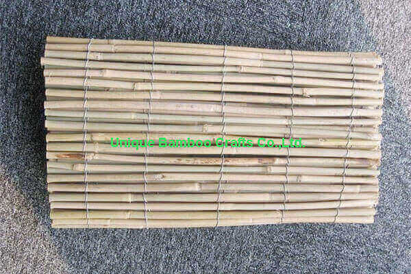 bamboo fence 1